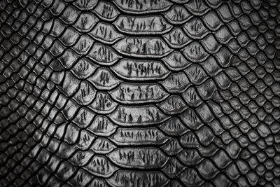 Nálepka Černá hadí kůže textura