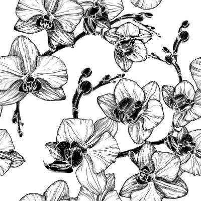 Nálepka černé a bílé bezešvé vzor s květy orchidejí