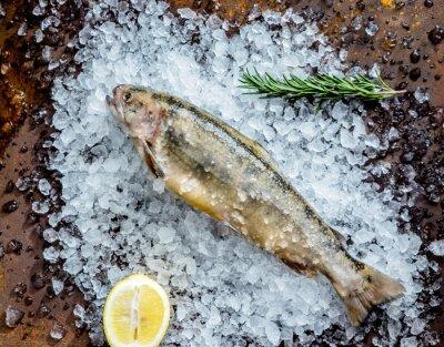 Nálepka čerstvá ryba