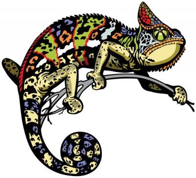 Nálepka chameleón