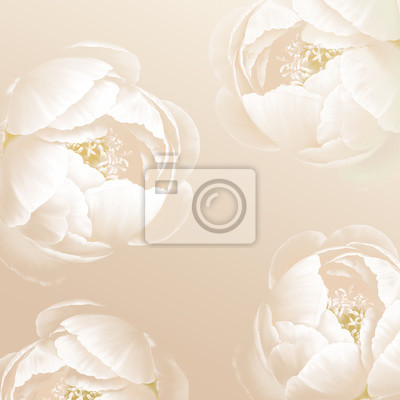 Close up of white flower petal, shades of white, teal, soft dreamy image.Wedding ornament concept. Floral poster, invite. Decorative greeting card, invitation design background