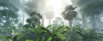 Nálepka coconut jungle in the morning in the fog, forest in the haze. 3d rendering.