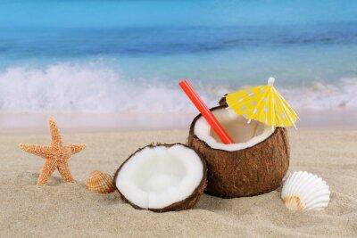 Nálepka Coconut ovocný koktejl pít v létě u moře a pláže