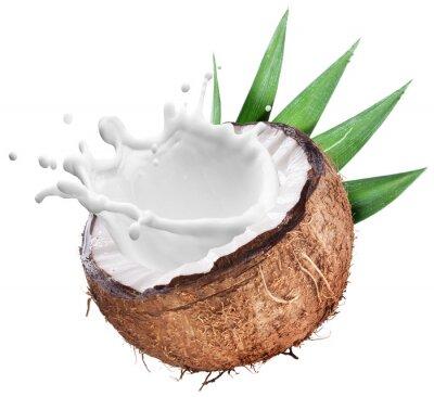 Nálepka Coconut with milk splash inside.