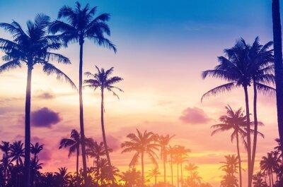 Nálepka Copy space of tropical palm tree with sun light on sky background.