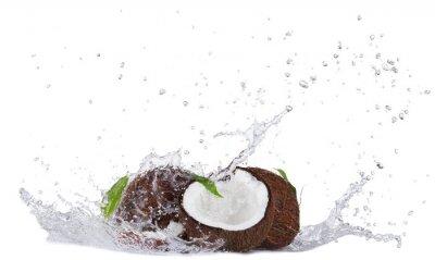 Nálepka Cracked coconuts in water splash on white