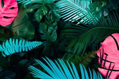 Nálepka Creative fluorescent color layout made of tropical leaves. Flat lay neon colors. Nature concept.