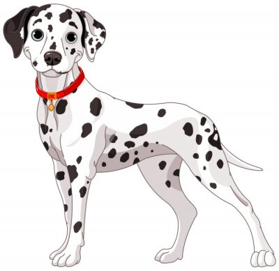 Nálepka Cute Dalmatian Dog