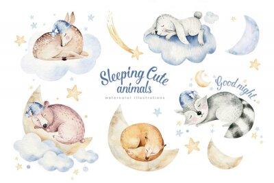 Nálepka Cute dreaming cartoon animal deer, bear hand drawn watercolor illustration. Sleeping rabbit charecher kids nursery wear fashion design, baby cartoon and fox