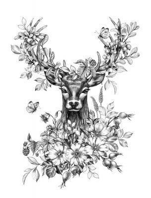 Nálepka Deer with Flowers, Berries and Butterflies Pencil Drawing