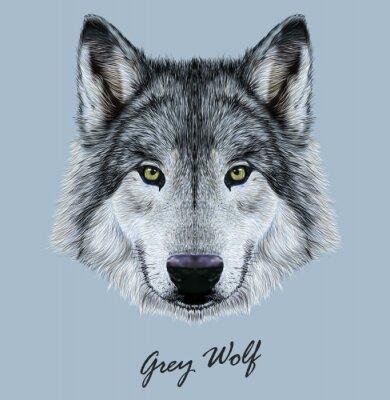 Nálepka Digitální vektorové ilustrace Portrét Wolfa.