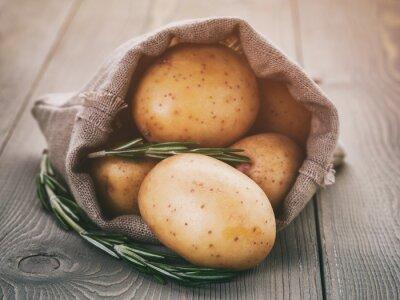 Nálepka dítě brambory v sáčku pytel s rozmarýnem na dřevěném stole, vinobraní tónovaný