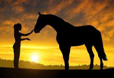 Nálepka Dívka s koněm při západu slunce