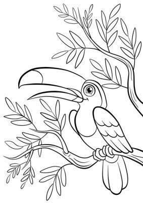 Nálepka druh usmívající roztomilé tukan v lese