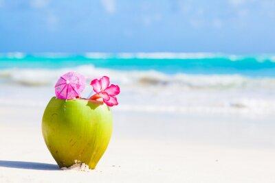 Nálepka dva čerstvý kokos koktejl na tropické pláži s květinou
