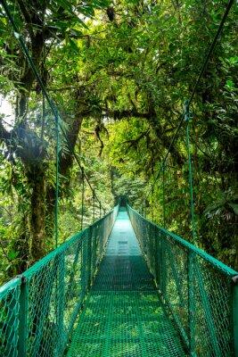 Nálepka eine Brücke im Regenwald v Kostarice