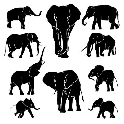 Nálepka Elephant Silhouette balení