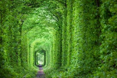 Nálepka Fantastický reálném Tunnel of Love, zelené stromy a železnice