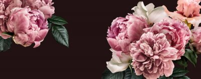 Nálepka Floral banner, flower cover or header with vintage bouquets. Pink peonies, white roses isolated on black background.