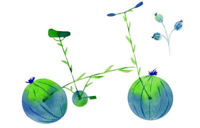 Nálepka Flower bike. Hand drawn watercolor illustration on paper. Green and blue bicycle flower with calyx round fruit buds briar and leaves. Isolated on white background