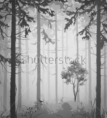 Nálepka forest air landscape with birds, black and white, vector illustration