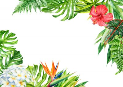 Nálepka frame, tropical leaves and flowers on an isolated background, greeting cards with space for text, watercolor painting,  floral design, plumeria, strelitzia, palms, monstera, ficus