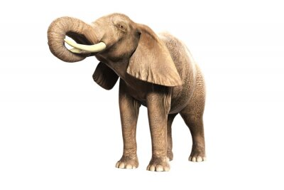 Nálepka Freigestellter Elefant mit erhobenem Russel (gerendertes Bild)