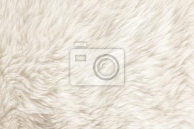 Nálepka Fur Texture./Fur textury