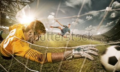 Nálepka Goalkeeper in gates jumping to catching ball