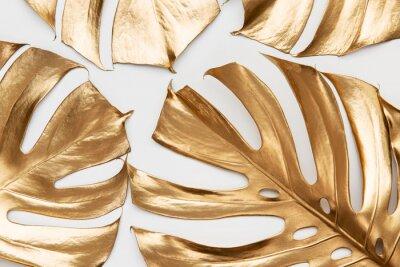 Nálepka Golden monstera leaves on white background