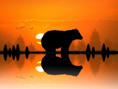Nálepka hnědé v lese při západu slunce