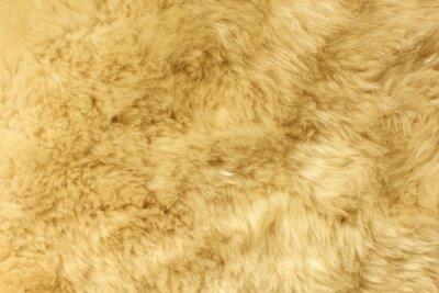 Hnědý chlupatý přírodní ovčí kožešina textury pro pozadí