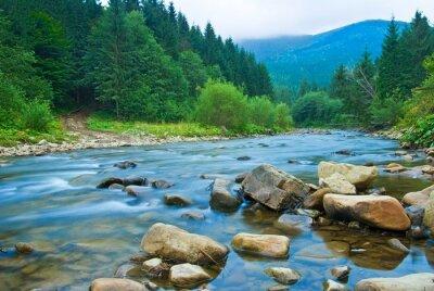 Nálepka horská řeka v mlze