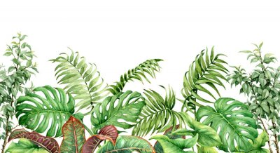 Nálepka Hranice tropické rostliny