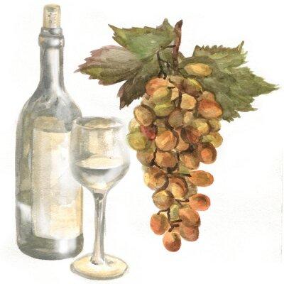Nálepka Hrozny, láhev na víno, bílé víno ve skleněné sklenice na víno. akvarelu