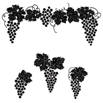 Nálepka Hrozny ryté design set Vine hroznového ornament prvek dekor sadu.