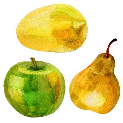 Nálepka Hruška, banán ručně malovaná malba akvarel ilustrace na bílém pozadí
