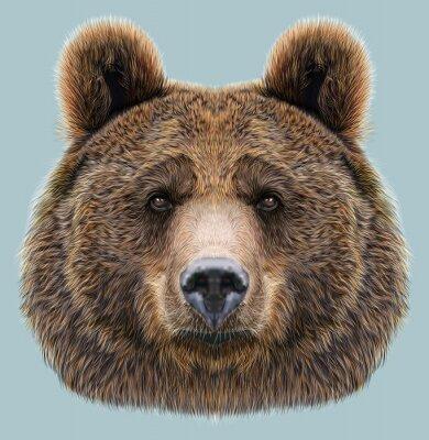 Nálepka Ilustrovaný Portrét medvěda na modrém pozadí