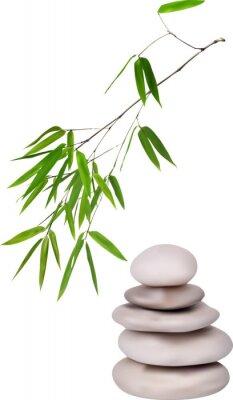 Nálepka isolated grey stones and green bamboo illustration