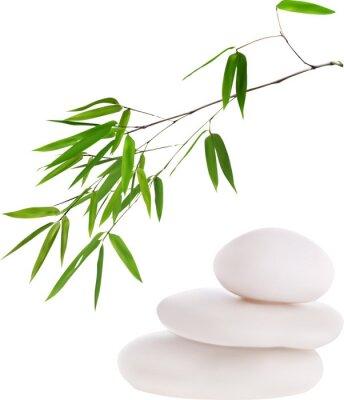 Nálepka isolated white stones and green bamboo illustration