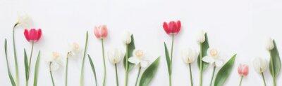 Nálepka jarní květiny na bílém pozadí