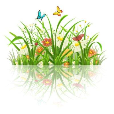 Nálepka Jarní tráva, květiny a motýli s odrazem na bílém