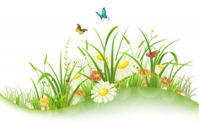 Nálepka Jaro léto louka s zelená tráva, květiny a motýli