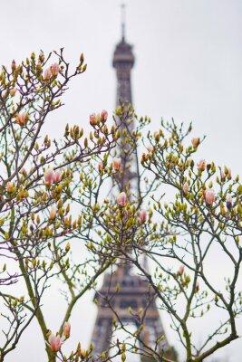 Nálepka Jaro v Paříži