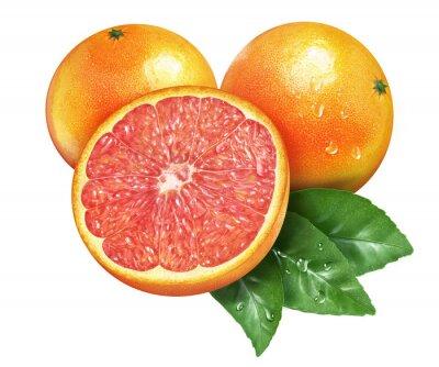 Nálepka Juicy čerstvé grapefruit na whtie pozadí
