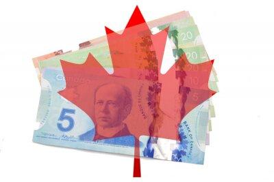 Nálepka Kanadský javorový list s dolary na bílém pozadí