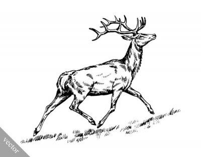 Nálepka kartáč malba inkoust čerpat vektorové ilustrace jelen