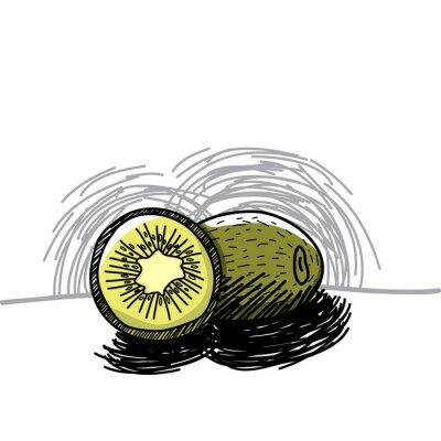Nálepka Kiwi s inkoustem ručně malovaná-Vektorové ilustrace