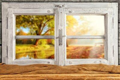 Nálepka Klasická dřevěná okna přehlédnout podzimní stromy