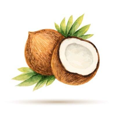 Nálepka Kokos